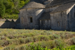 Abbaye Notre-Dame de Sénanque-15